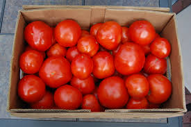 Tomatoes, in a box